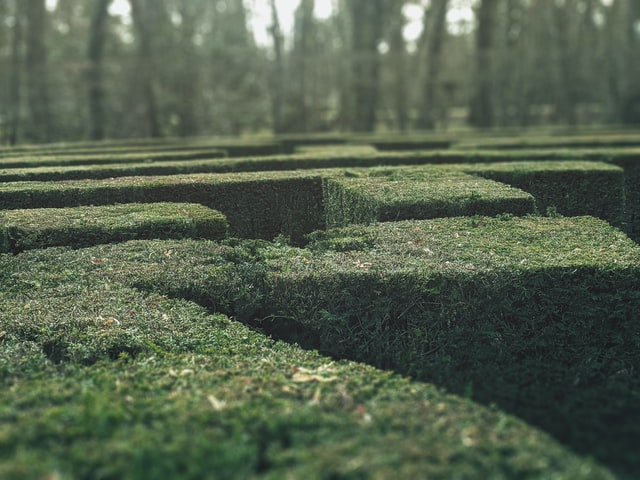 b2b buyer journey is a maze